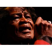 James Brown Concert Download